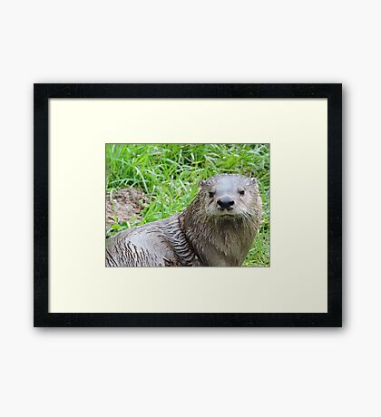 Courageous In Character Framed Print