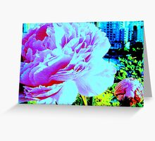 Giant Peony Greeting Card