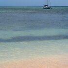 Sail Away by Kate Heard