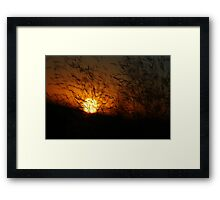 Free State Sunset - Petrusburg, South-Africa  Framed Print