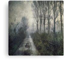 Fog on the Bridleway Canvas Print