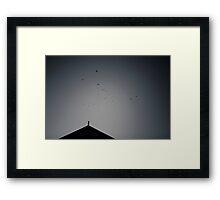 Queenscliff Cormorants Framed Print