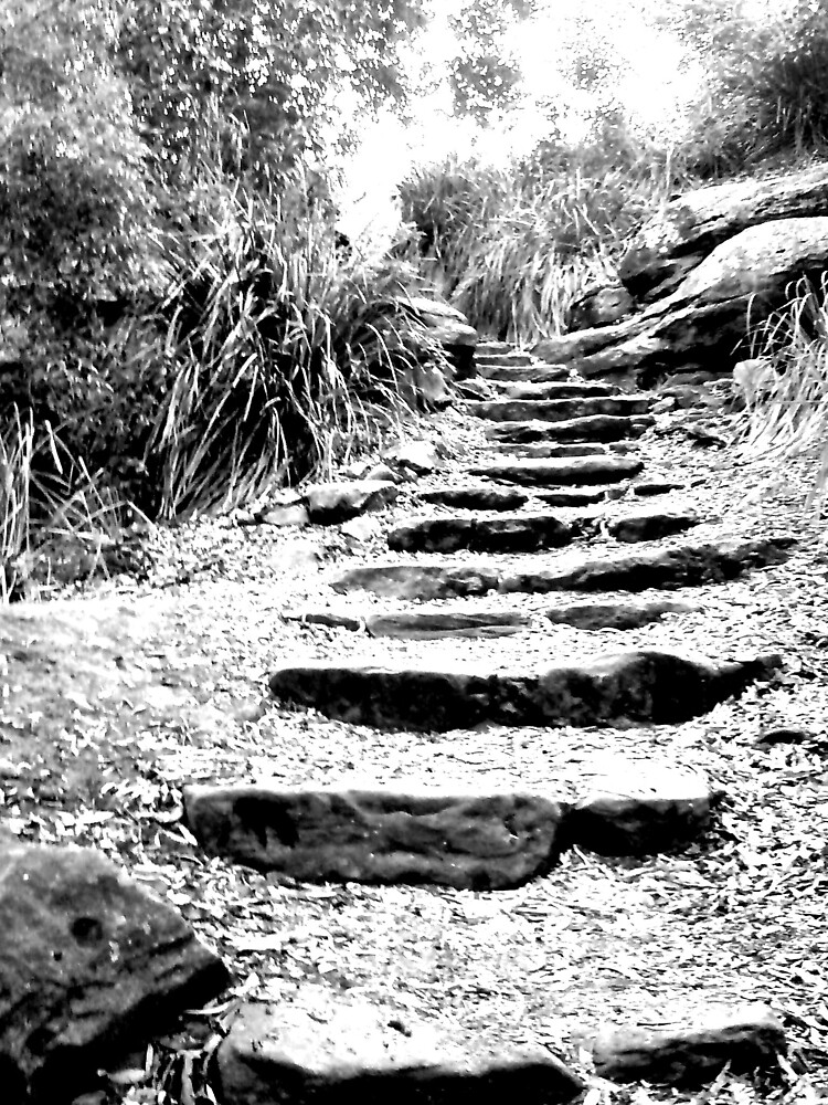 rock stairs by Ana Bradasevic