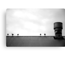 Birds on a roof Canvas Print