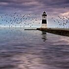 The Light On the Pier - Erie, PA by Kathy Weaver
