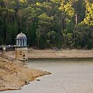 Dam Drought! by Richard Annable