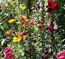 English Garden by richiewright