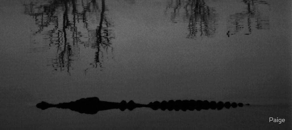 Dawn Croc by Paige