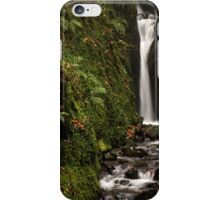 Dollar Glen iPhone Case/Skin