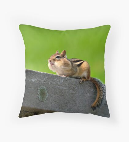 Don't tuch my nuts Throw Pillow