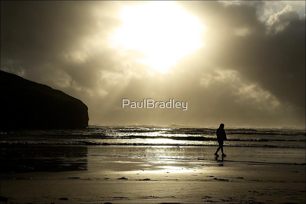 Evening Stroll by PaulBradley