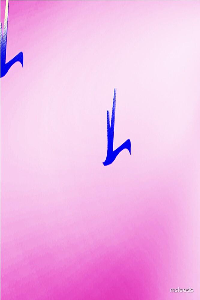 Flight#2 by msleeds