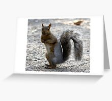 you're talking to me ? Greeting Card
