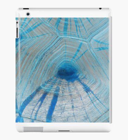 Tortoise Blue iPad Case/Skin
