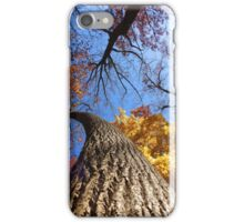 Curved iPhone Case/Skin