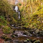 Little Fawn Waterfall by M.S. Photography/Art