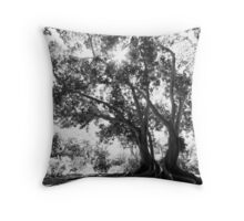 Banyon Tree Throw Pillow