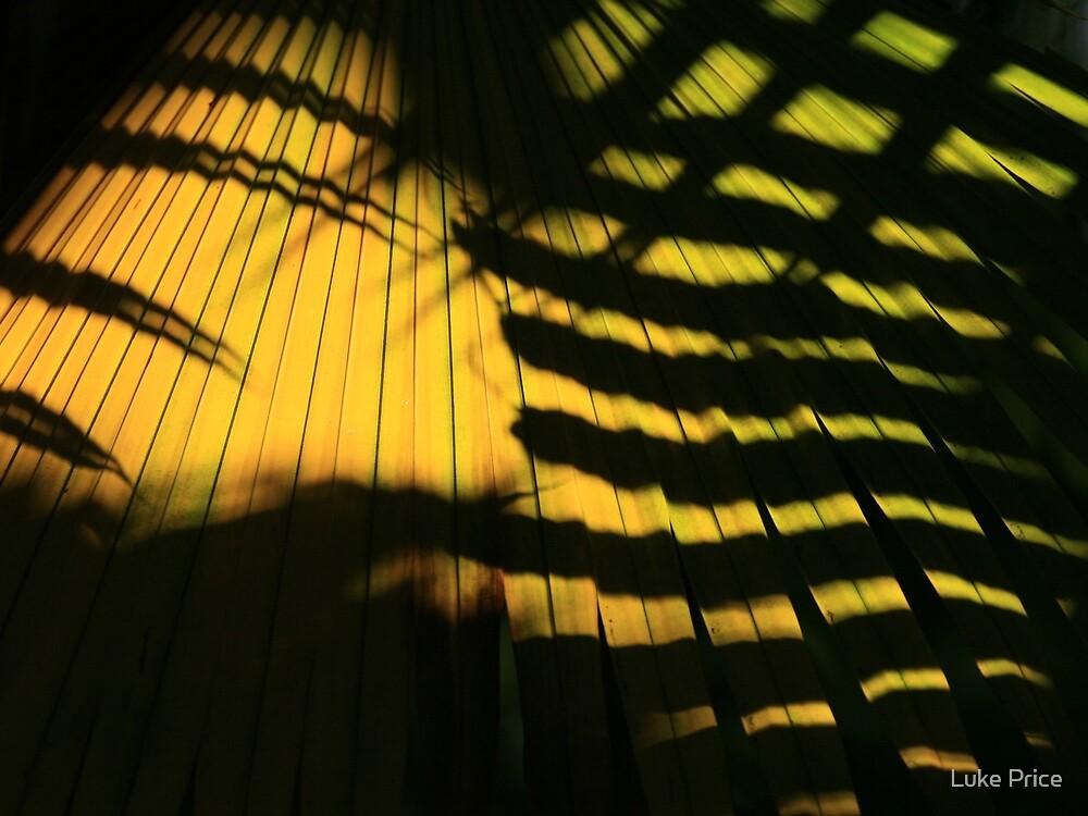 Palms by Luke Price