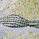 Alligators in the Swamp by Amber Finan