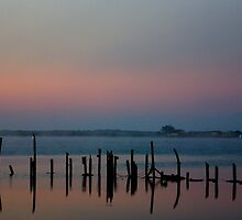 Murray river morning by Matt Harvey