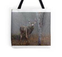 Buck - White-tailed deer Buck Tote Bag