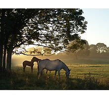 september morn Photographic Print