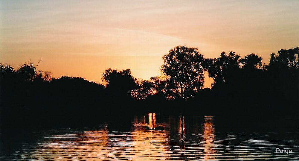Kakadu at dawn by Paige