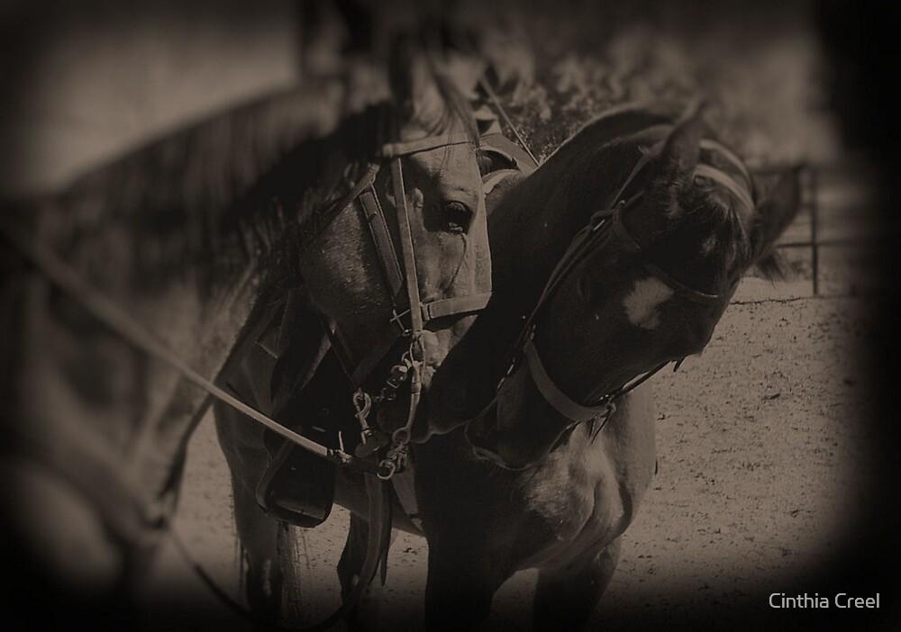 Horses in Love by Cinthia Creel