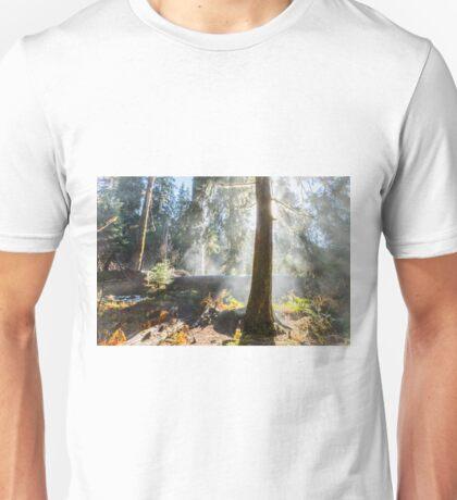 Hoh Rain Forest Rising Mist Unisex T-Shirt
