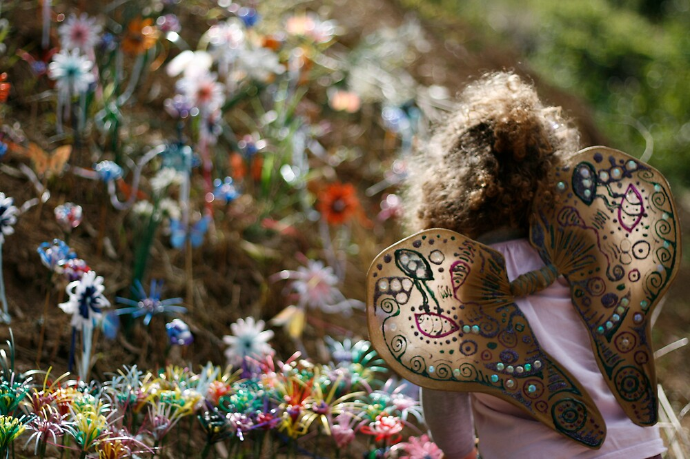 Fairy Garden by psyme