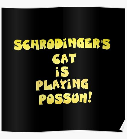 "Gold lettering with the message ""Schrodinger's Cat Is Playing Possum"". Poster"