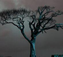 The Rihanna Tree, Angry Sticker