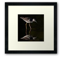 Greater Yellowlegs Reflects Framed Print