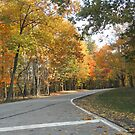 Bedford Reservation 002 by BarbBarcikKeith