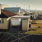 Backyards of Kempsey by Lachlan Kent