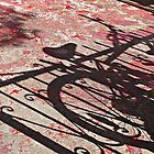 Bike Shadow on Red © by Ethna Gillespie