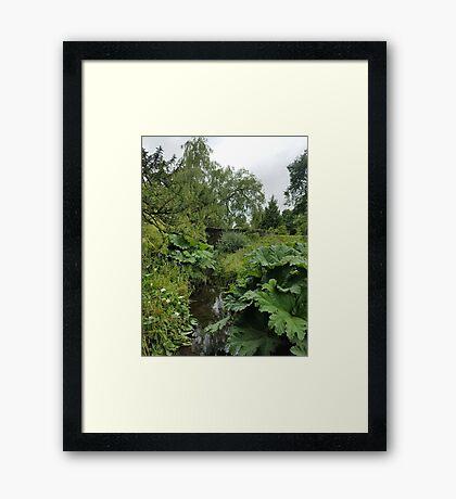 Blarney Castle Gardens Framed Print