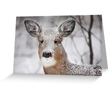 I hate snow! - White-tailed Deer Greeting Card