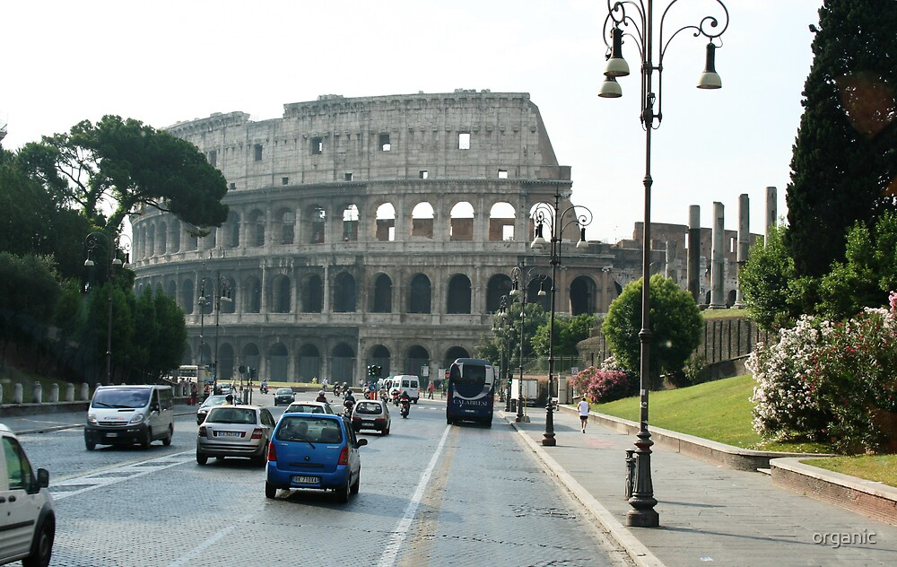 The Colliseum/Rome, Italy by organic