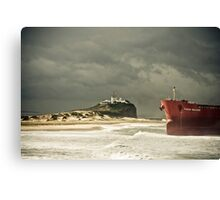 Pasher Bulker - Effects of Nature Canvas Print