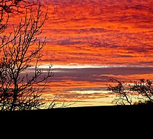 Sunset in Central Scotland by newlees