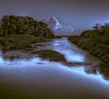 The River Otter by maratshdey