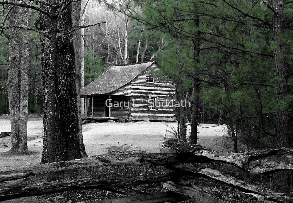 Carter Shields Cabin VIII by Gary L   Suddath