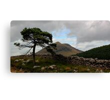 Mourne Country Canvas Print