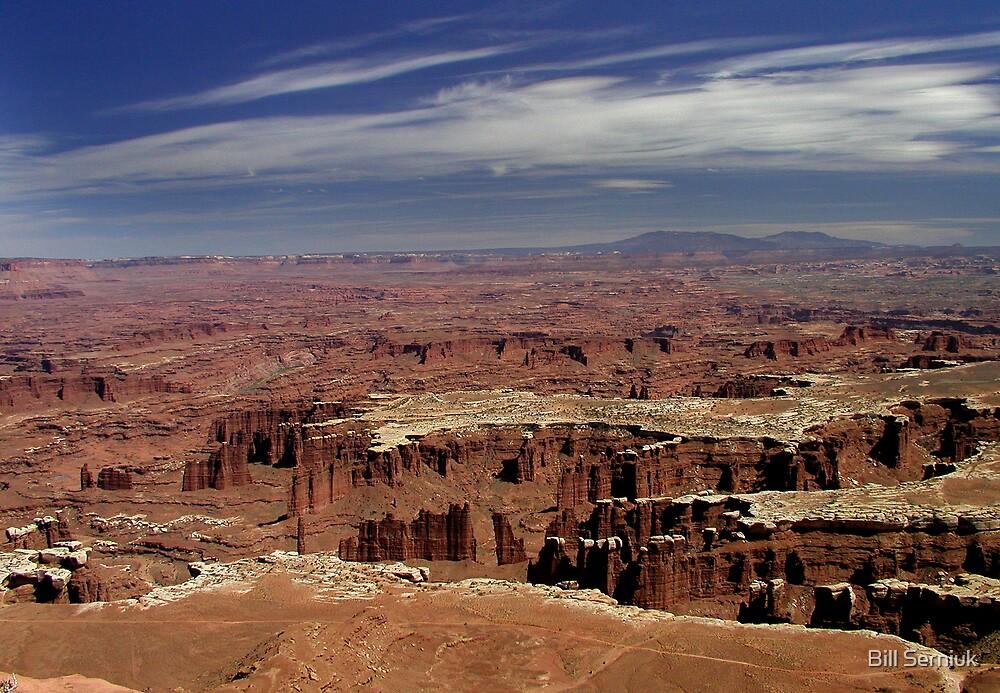 Canyonlands by Bill Serniuk