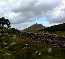 Mourne Country View by Wrayzo