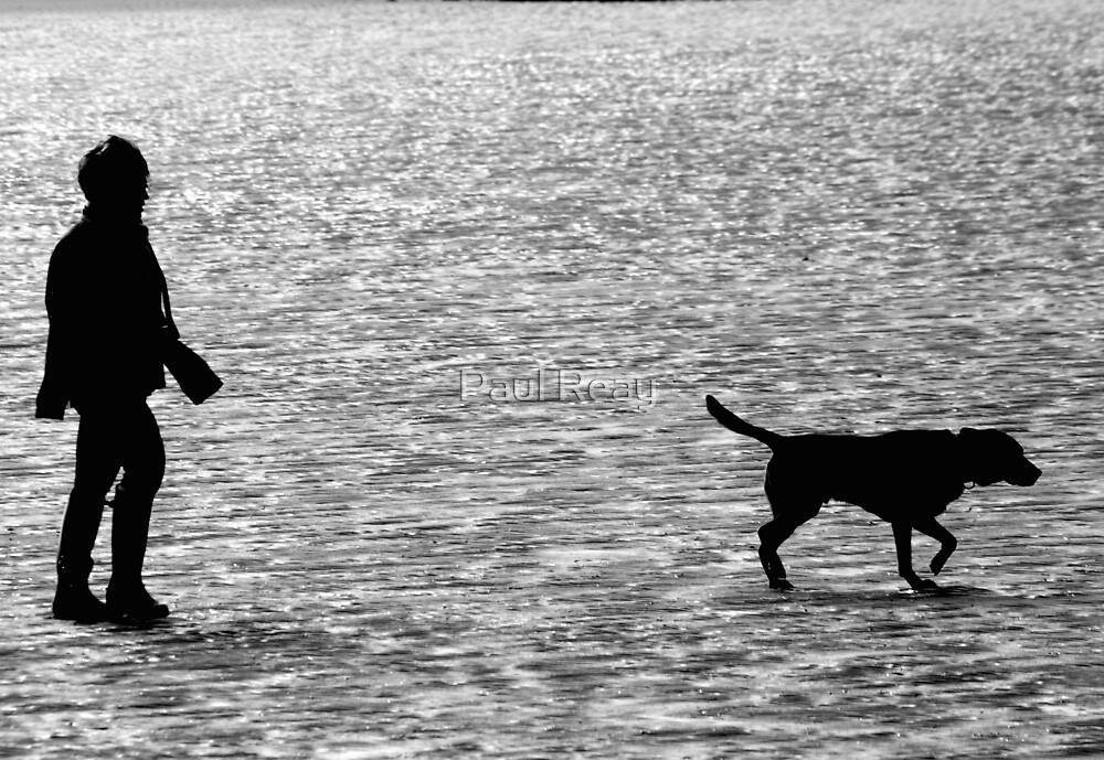Walking the dog by Paul Reay