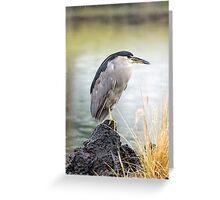 Heron in th Rain Greeting Card