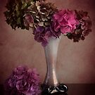 Dried Hydrangeas in vase by eddiej