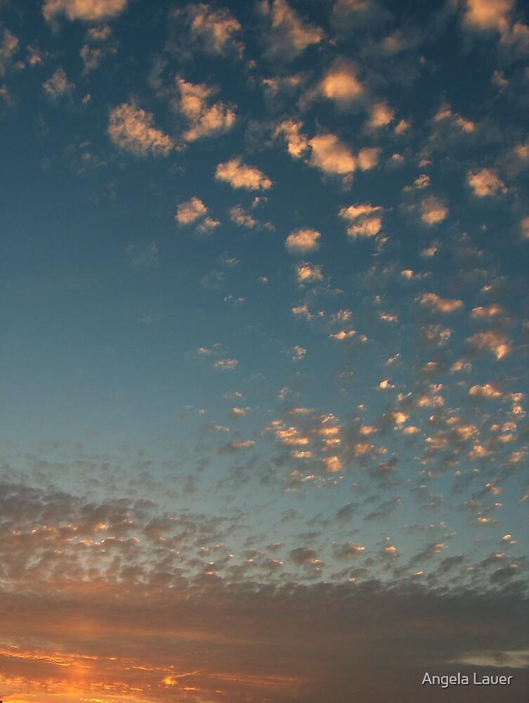 Cotton Sunset by Angela Lauer